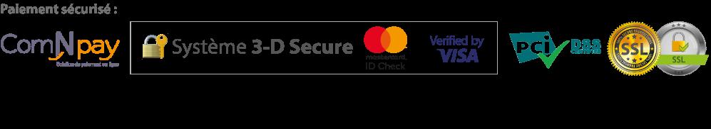 Moyes de paiement sécurisé